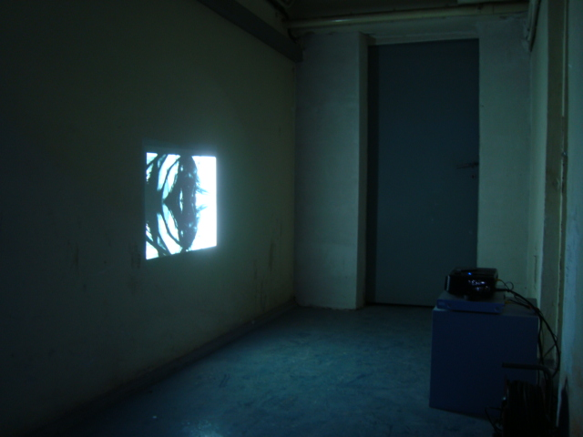 Francisca Bancalari, Quiet Room, 2007, video